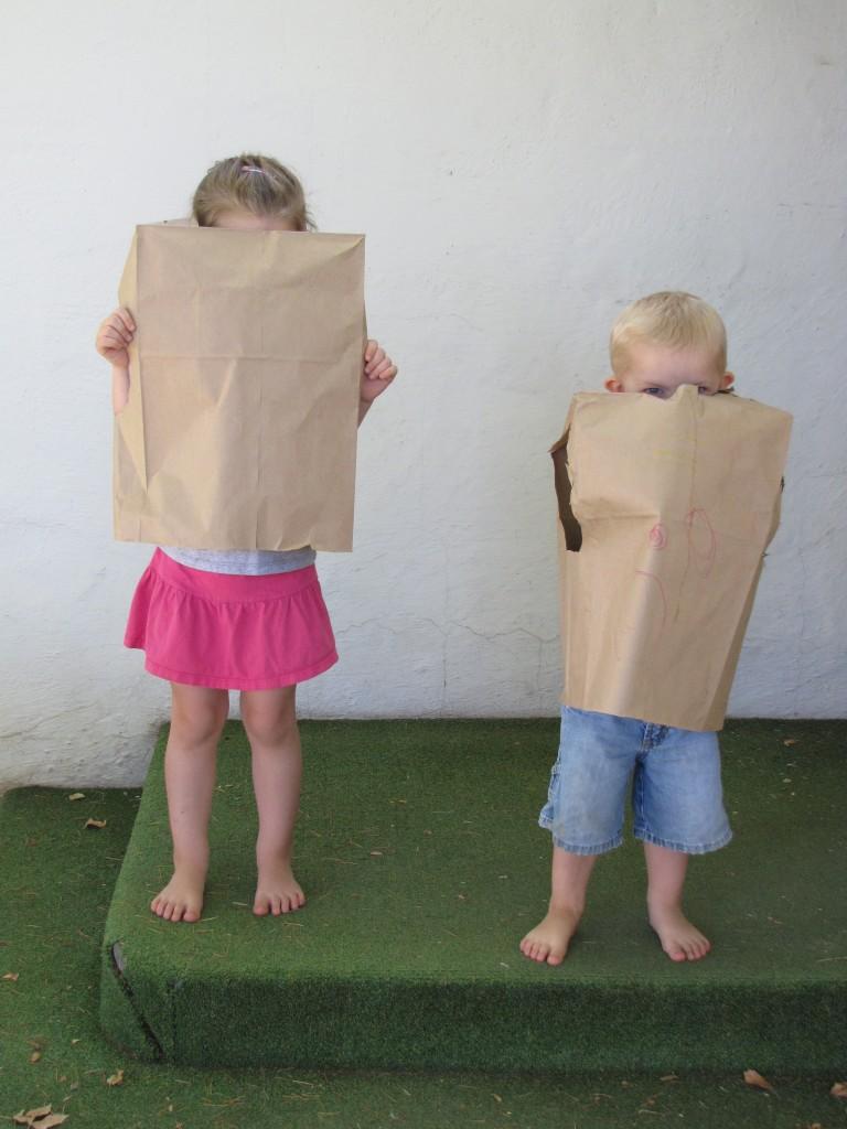 Paper Bags 3