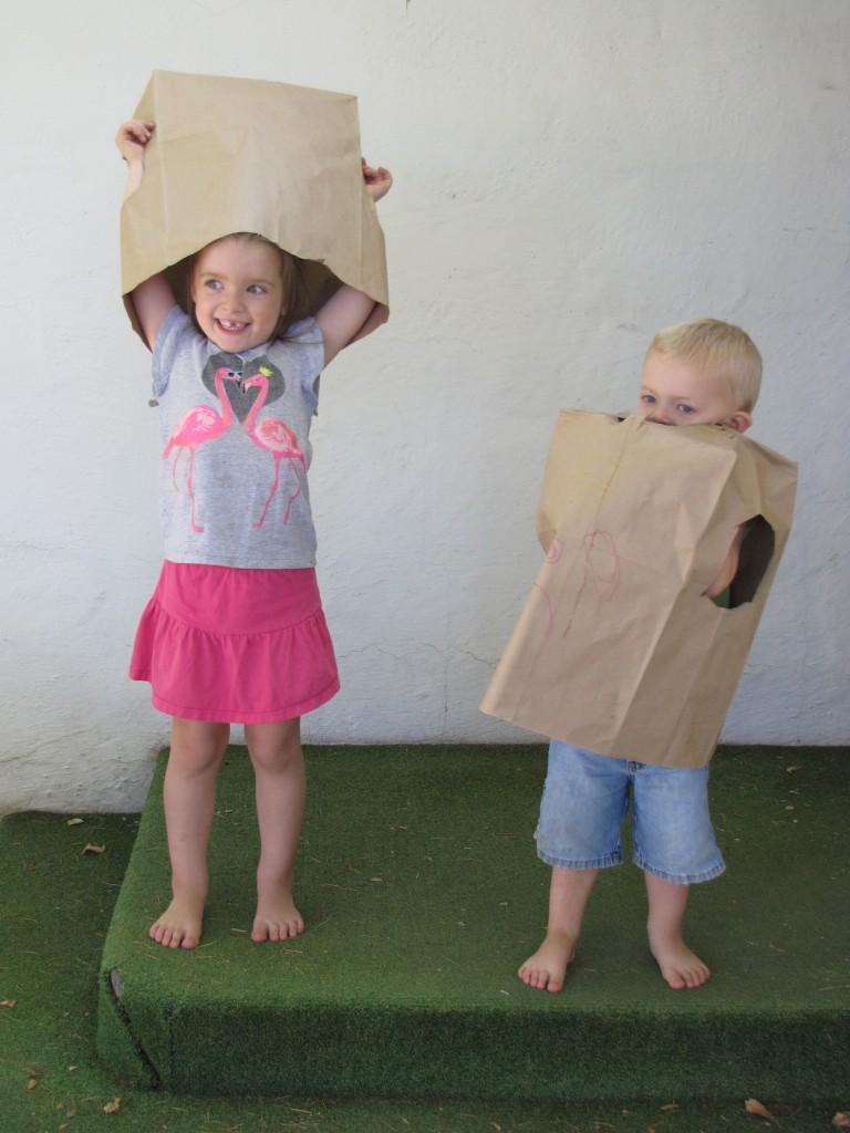 Paper Bags 4