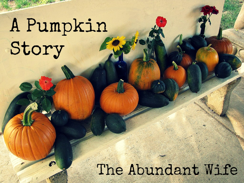 A Pumpkin Story by The Abundant Wife (With 12 Links to Pumpkin Fun!)