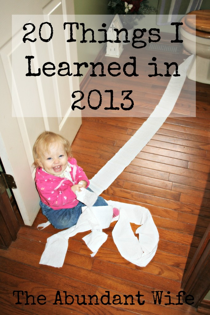 20 Things I Learned in 2013