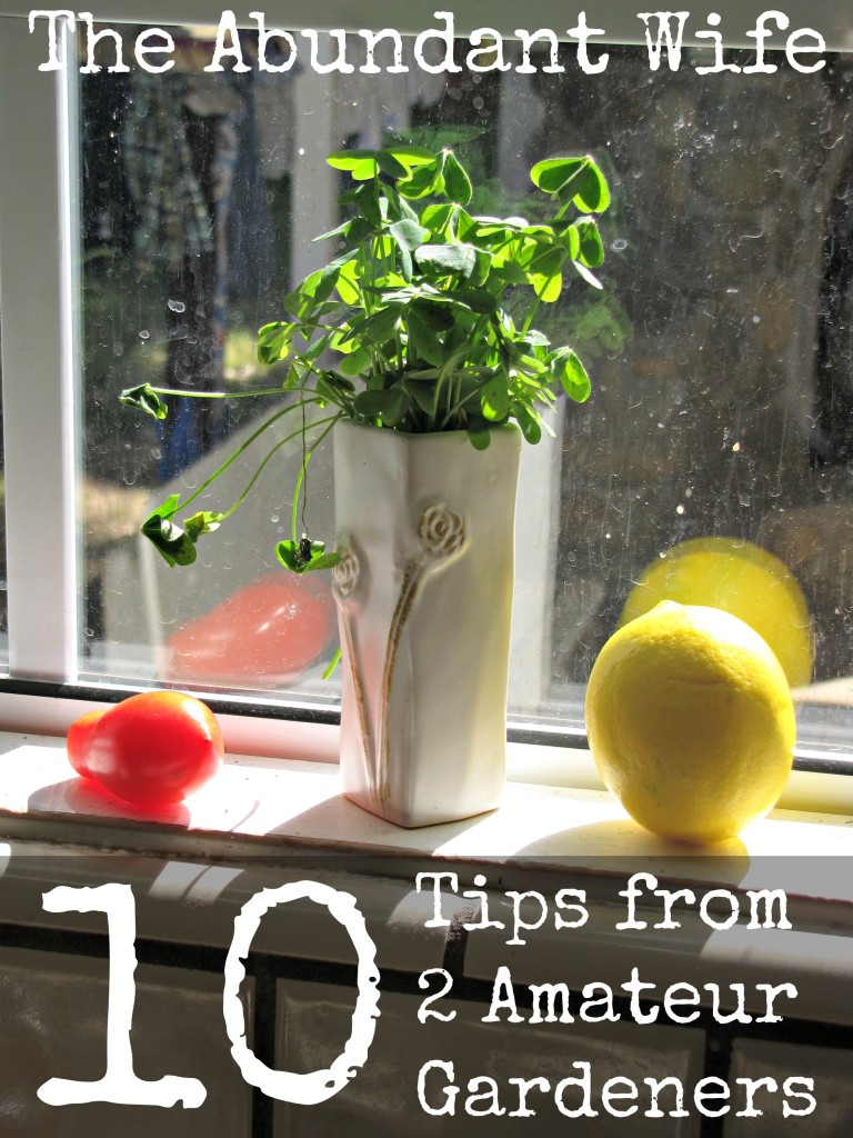10 Tips from 2 Amateur Gardeners