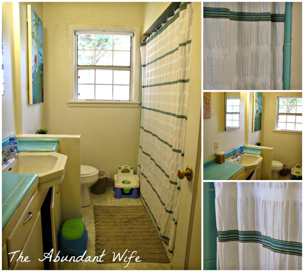 Our White, Turquoise, & Tan Bathroom